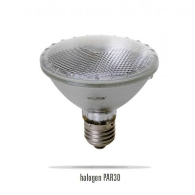 LAMP PAR 20° 50W E27